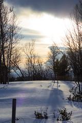 IMG_2491 (d.schaefer) Tags: winter norway hütte norwegen röros valhall øvensenget
