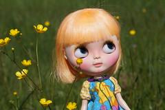 Lemony loves spring