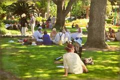 picnic in the park (tonnyc) Tags: park newzealand vintage picnic artdeco napier clivesquare underthetreestexture