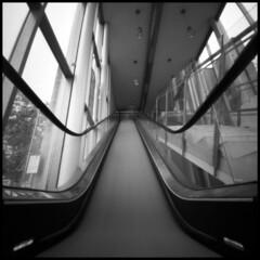My pinhole day 2014 # 8 (Roberto Messina photography) Tags: italy 6x6 film rollei analog pinhole avril zero2000 zeroimage asti 2014 25asa rpx pinholeday2014