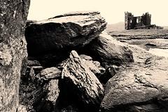 Whispers . . (heinrich_511) Tags: ireland roses castle rocks whisper heart