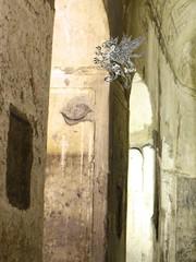 Basilica_Porta Maggiore_H