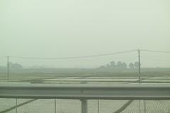 Rice padi along Quoc Lo 2 highway to Sa pa & Lao Cai (alfe) Tags: samsung vietnam nx30 ql2 quoclo2