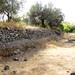 Giardini Naxos DSC00616