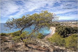 (012/15) Playa del Torres (Villajoyosa)