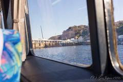 (GenJapan1986) Tags: 2015            travel japan island nikond610 sea pacificocean izuoshima