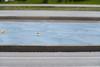 #6FMDD 2/10 - Originell/Inventive (derliebewolf) Tags: street city blue green lines dresden dof bokeh ducks rubber symetry rubberducks symetrie inventive fotomarathon originell fmdd fotomarathondresden 6fmdd