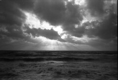66 (michaelivnitsky) Tags: bw film 35mm tel aviv d76