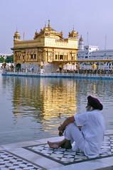India - Punjab - Amritsar - Golden Temple - 335 (asienman) Tags: india sikh punjab amritsar gurudwara goldentemple harmandirsahib asienmanphotography