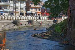 DS1A3902dxo (irishmick.com) Tags: nepal kathmandu 2015 guhyeshwari bagmati ghat