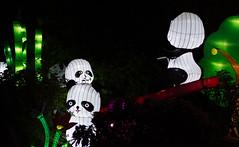 _DSC9742_2 (Elii D.) Tags: light fish flower animal night zoo monkey neon dragons lantern lampion dargon