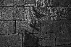 La sombra del guila (M. Martn Gmez) Tags: espaa easter spain catholic religion procession tradition ostern spanien semanasanta elche tradicin holyweek  prozession comunidadvalenciana