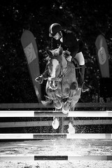 Jump (tiagofjphotography) Tags: bw horse white black portugal sports animal vertical canon photography jump action fair riding telephoto freeze barrier rider equestrian oeste lusitano