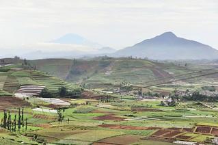 dieng plateau - java - indonesie 28