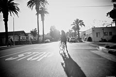 DSC_0082 - Version 2 (clotilde.imbert) Tags: bike cyclists vlo shinola cyclechic