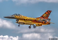 AIR FORCE BELGIAN. F-16 (31 TIGER SQUADRON). (Rodrigo Tran Corts) Tags: airport tiger zaragoza f16 belgian airforce aeropuerto base tigre spotting nato caza otan tigermeet garrapinillos ntm2016