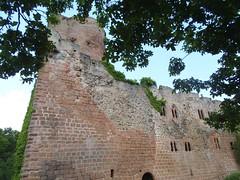 Chteau de Kintzheim - Volerie des Aigles (routedeschateauxdalsace) Tags: kintzheim alsace basrhin