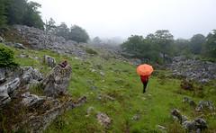 Padrobaso (Paulo Etxeberria) Tags: fog umbrella paraguas niebla brouillard parapluie gorbea gorbeia lainoa euritakoa gorbeialdea basatxi padrobaso