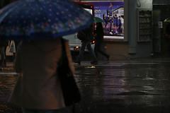 Tempo (betina_carcuchinski) Tags: chuva tempo portoalegre guardachuvas downtown city rain fotojornalismo betinacarcuchinski jornalismo fotografia photojournalism journalism photo