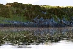Anchorage Puilla Dobhrain (the bay of the otters) (Graham Cameron Himself) Tags: sea seascape sunshine island scotland seaside rocks unitedkingdom harbour rocky peaceful seilisland scottishloch