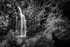 Morialta Falls (*ScottyO*) Tags: trees winter blackandwhite bw cliff plants nature water grass landscape waterfall rocks outdoor australia adelaide sa southaustralia shrubs morialta morialtafalls