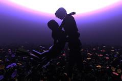 Waltz for the moon (Light_Aoshimori) Tags: sunset sky mystery squall fantasy secondlife rinoa flowerfield ff8 finalfantasyviii squallleonhart rinoaheartilly