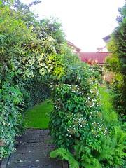 DSC03855 (Mr.J.Martin) Tags: tusslingbavaria bayren germany gapp garden canal village church wildflowers