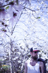 (hipermania) Tags: man tree beautiful copenhagen beard spring young magnolia tomo mangnolia 2013 hipermania copenhagenpeople hipermaniaphotos
