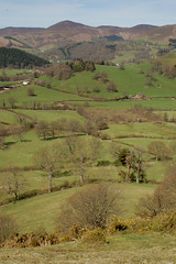 16 fields and hills (Vertigogen) Tags: wales berwyn llangollen denbighshire velvethill may2013