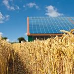 PV in der Landwirtschaft