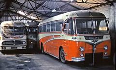 Mulley, Ixworth: Two AEC Reliances inside Ixworth Garage (Mega Anorak) Tags: bus coach harrington reliance aec duple mu3rv mulleyixworth nichollssouthend