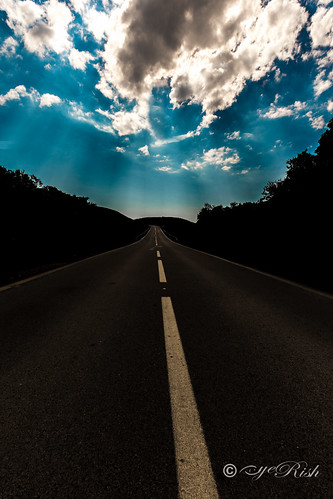 Follow the Heart - Road to Love