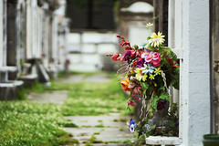 Independence is a precious thing. (explored) (Linh H. Nguyen) Tags: flowers colors cemetery graveyard lafayette neworleans story gravestone explored nex7