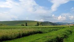 alcski tj / landscape (debreczeniemoke) Tags: field landscape day cloudy land transylvania transilvania tj tjkp erdly mez csk szkelyfld canonpowershotsx20is alcsk bnkfalva