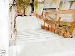 Herrenhaus Orr - Die Betondecke - 60 (foerdervereinrittergutorr) Tags: park haus treppe decke impressionen orr beton renovierung denkmal erinnerungen historisch lahu herrenhaus rittergut wiederaufbau naturschutz pulheim forderverein