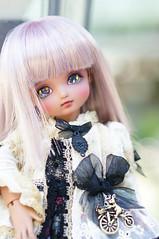 DSC01107 (zeky_afa) Tags: doll bjd roko ciaobella bambicrony
