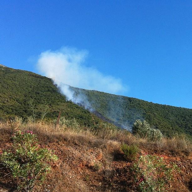 Erba, alberi, frasche. Fuoco, fumo, cenere. Il territorio scorticato.