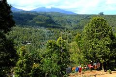 Bali mountains (VincentDcs) Tags: bali canon indonesia landscape photography photo photos ricefield canon1022 600d munduk canon600d
