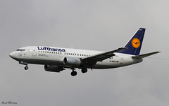 Lufthansa 737-300 D-ABXX (birrlad) Tags: germany airplane airport frankfurt aircraft aviation airplanes landing airline boeing arrival airways approach runway lufthansa airliner 737