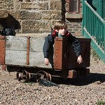 Max in a wagon