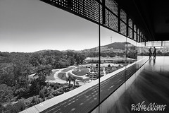 View of the Park (Nualchemist) Tags: sanfrancisco goldengatepark park shadow blackandwhite reflection silhouette deyoungmuseum vanishingpoint perspective highcontrast wideangle architectural highangle glasswall elementofdesign extremecomposition