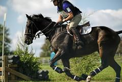 Friday One Star Cross-country (Tackshots) Tags: lexington crosscountry eventing horsetrials kentuckyhorsepark hagyard midsouththreedayevent