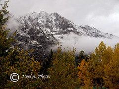 Grand Teton NP on a Stormy Day (55) (moelynphotos) Tags: autumn snow mountains clouds stormy grandtetons nationalparks stormyweather grandtetonnationalpark moelynphotos grandtetonsinthefall