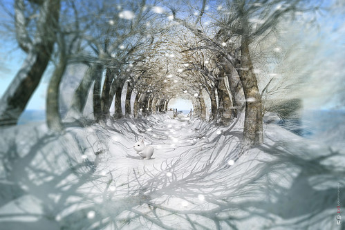 ❥ Winter breath... | Winter series