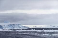 Antarctica - Day Three0422 (GLRPhotography) Tags: ice antarctica iceberg 18200 weddellsea princegustavchannel erebusandterrorgulf