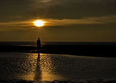 Another Place (Stephen Whittaker) Tags: sunset shadow sea reflection men water silhouette golden sand nikon iron anthony antony gormley crosby