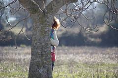 IMG_8176_1 (Anastàssia) Tags: tree nature fig mallorca