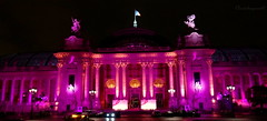 The Pinky Palace - Soire Ruban Rose au Grand Palais 1 (Cloudwhisperer67) Tags: world city travel pink light people urban cloud paris france art love against rose architecture night rural dark landscape fun photography lights amazing scenery cityscape nightscape darkness artistic spirit lutte sony au great cancer grand palace pinky explore le soul stunning palais ribbon soire lovely scape raphael exploration incredible nuit rare contre estee ruban the raphal lauder whisperer este cloudwhisperer hx9v cloudwhisp