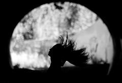 Karen (sixbyseven) Tags: portrait mamiya film nikon voigtlander d2x pro medium format portra 160 rz67 filmisnotdead