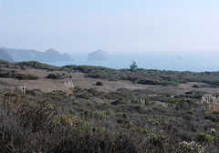 At Jade cove, looking south (emdot) Tags: ocean california pacific bigsur centralcoast jadecove